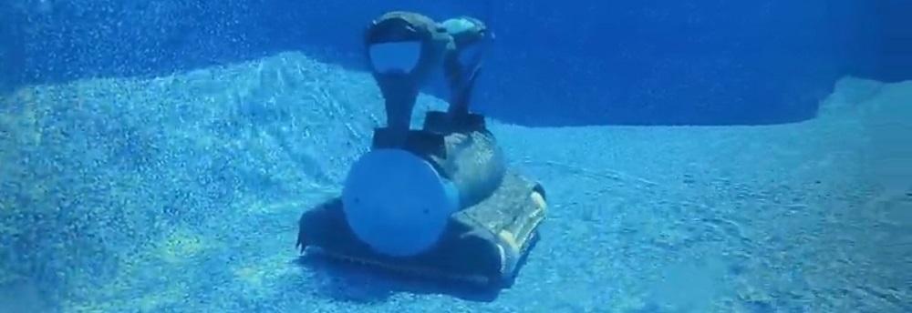 Dolphin Premier vs Dolphin Sigma