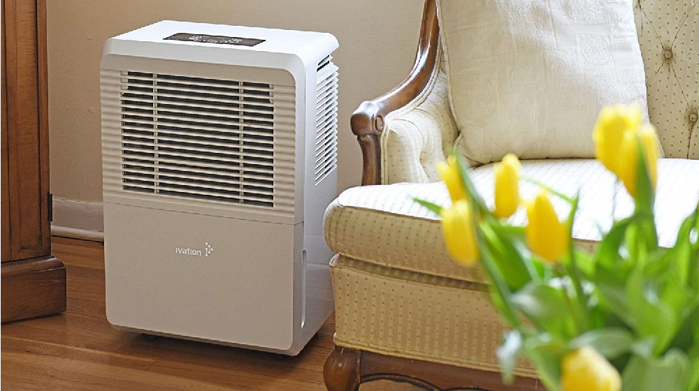 Top 5 Best 50-Pint Dehumidifiers