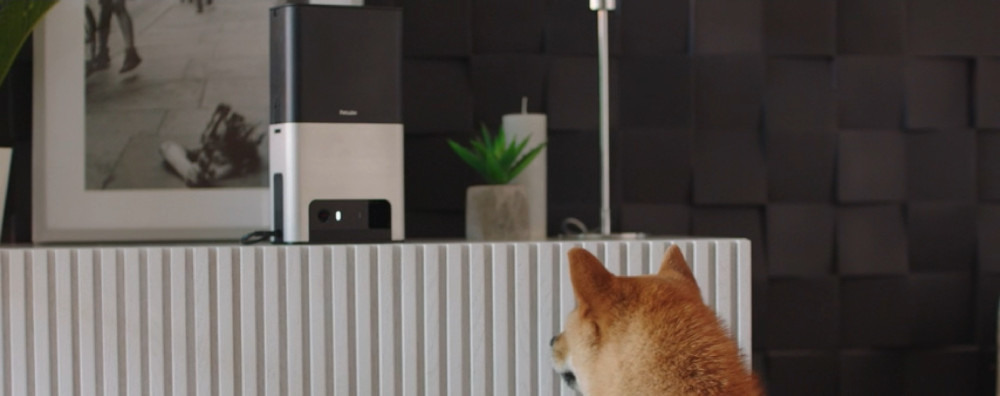 Petcube Bites 2: Smart Pet Camera with Treat Dispenser Review