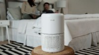 Levoit Air Purifier for Home Allergies Review