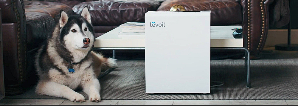 LEVOIT vs Hathaspace Smart Air Purifier