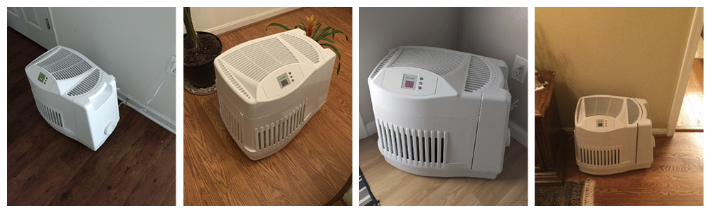 Evaporative Humidifier with filter