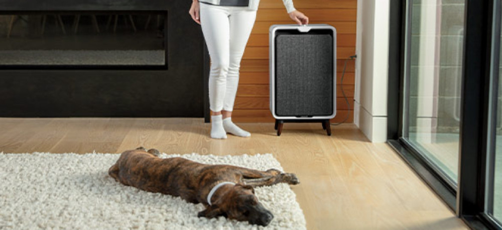 Bissell  Air320 vs Air220 Air Purifier