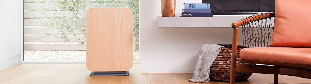Can an Air Purifier Protect You From the Coronavirus?