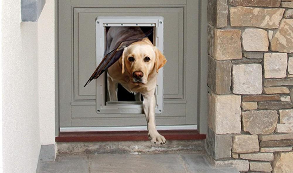 pet smart doggie doors